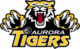 Aurora Minor Hockey Association company